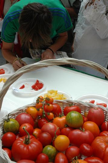 degustation-tomates-avec-gr.jpg