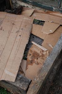 2cultiver--sur-compost-pbeu