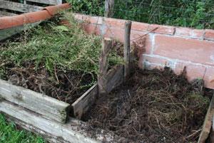 terreau compost